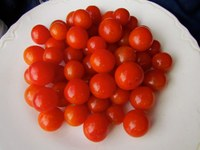 Peacevine Cherry tomatoes