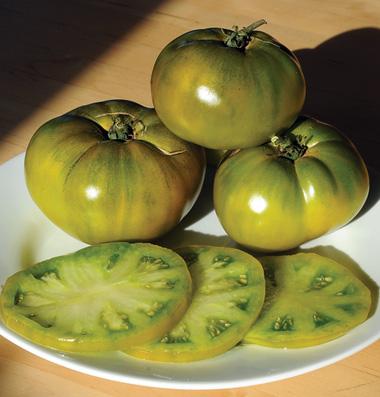 Cherokee Green tomatoes