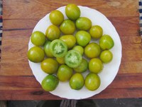 Green Grape tomatoes