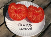 German Johnson tomatoes