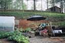 outside-greenhouse.jpg