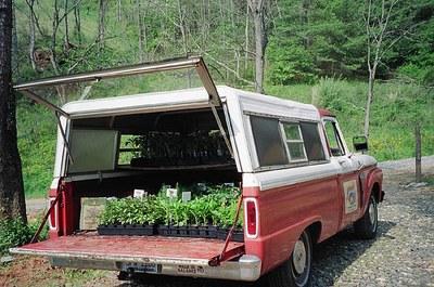 tomato-truck-goin-to-mkt.jpg