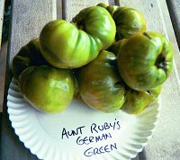 Aunt Ruby's German Green tomatoes